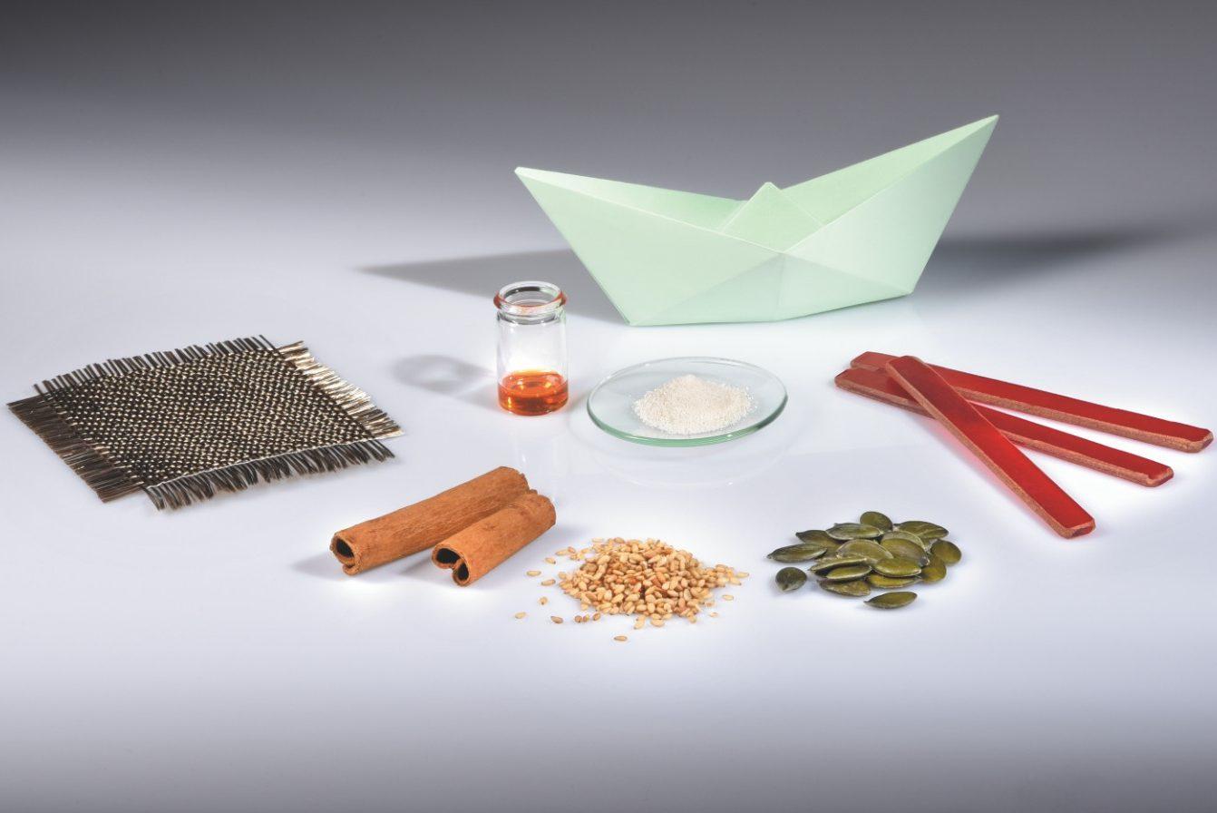 Ausgangsmaterialien für die Entwicklung brandsicherer und biobasierter Faserverbundwerkstoffe für den strukturellen Leichtbau in Schiffen